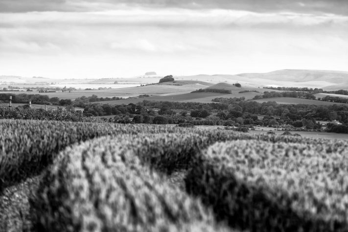 The Vale from Pewsey Hill